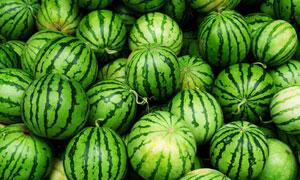 卖场货架上的新鲜西瓜摄影高清图片