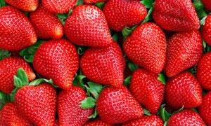 甜嫩汁多优质草莓特写摄影高清图片