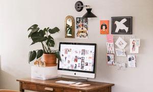 书桌上的显示器与植物摄影高清图片