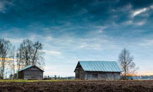 野外的树木与木屋风光摄影高清图片