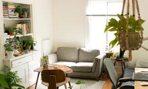 紧凑房间里的家具摆设摄影高清图片
