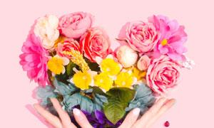 手捧手势上的心形花束摄影高清图片