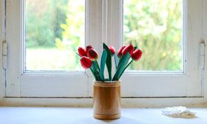 在窗台上的红色郁金香插花高清图片