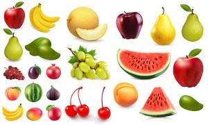 西瓜无花果与牛油果等水果矢量素材