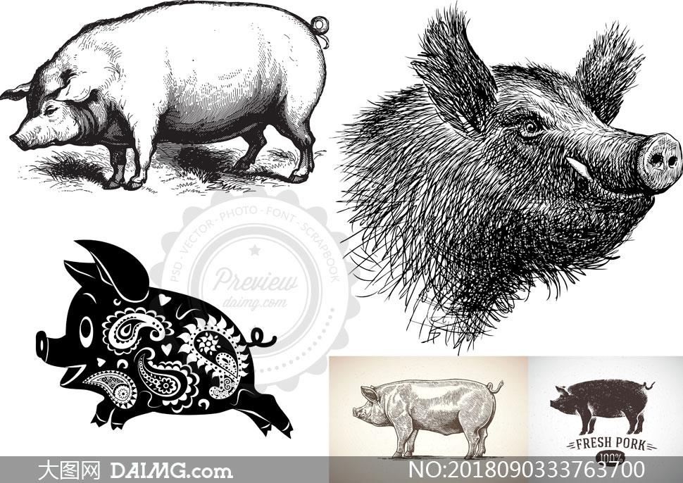 剪纸猪与素描效果的猪创意矢量素材