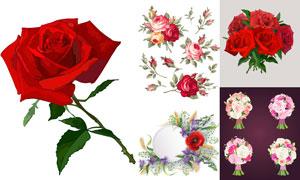 玫瑰花束與捧花等花朵主題矢量素材