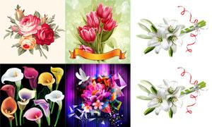 郁金香百合等花朵主题设计矢量素材