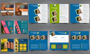 画册内页图文排版设计模板矢量素材