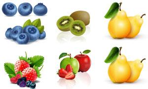 蓝莓猕猴桃与草莓苹果主题矢量素材