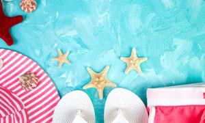 海星贝壳与凉鞋等物品特写高清图片