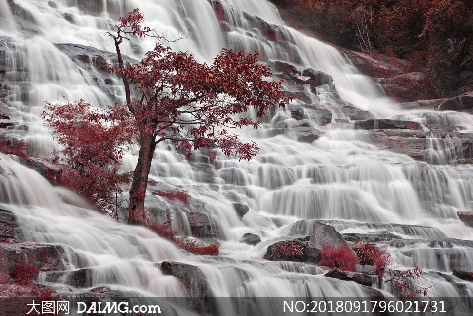 图片摄影自然风景风光瀑布山间树木大树植物植被岩石山石石头红叶叶子