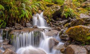 山间杂草丛生瀑布风景摄影高清图片
