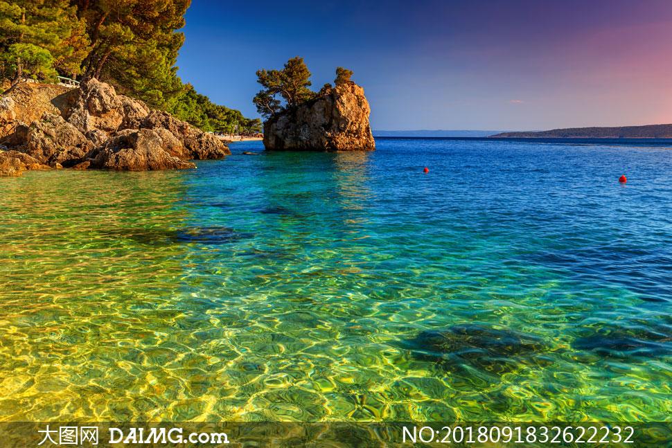 海岸树林与海天一色的风景高清图片