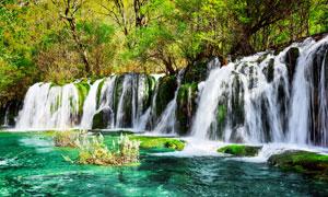 瀑布风光与茂密的树林摄影高清图片
