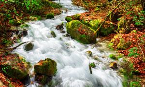 山中石头与湍急的溪流摄影高清图片