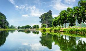 蓝天白云树木河水风景摄影高清图片