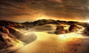 金灿灿的沙漠自然风景摄影高清图片