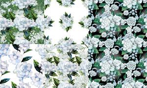 绿叶白花图案无缝拼接效果高清图片