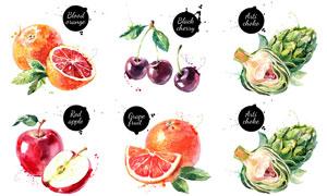 蘋果與櫻桃等水彩效果水果矢量素材