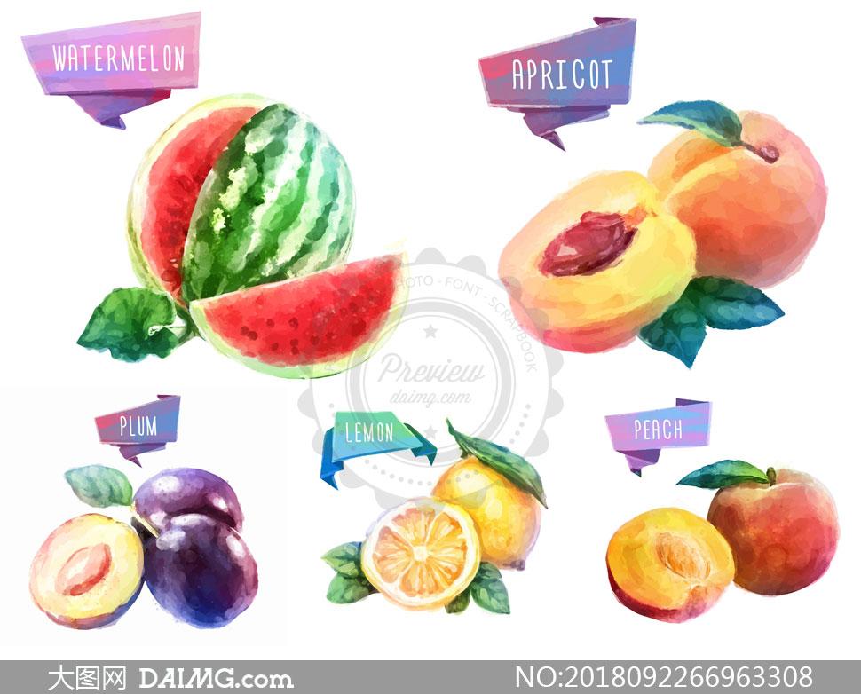 切开的柠檬等水彩果实创意矢量素材