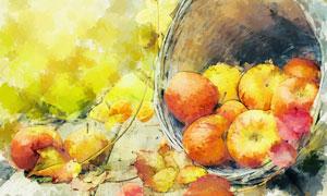 从筐里散落出来的苹果绘画高清图片