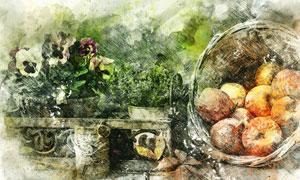 花卉植物与水果等静物绘画高清图片