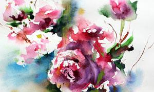 水彩创意花卉植物绘画作品高清图片