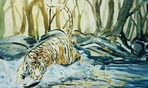 林中猛兽老虎绘画创意设计高清图片