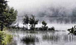 雾气湖畔树丛风光绘画设计高清图片