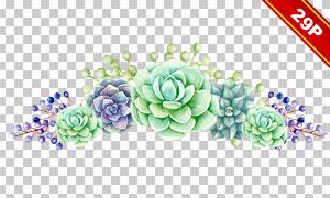 水彩效果木板花朵主题免抠高清素材