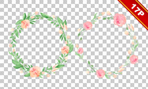 夏日花朵绿叶水彩创意免抠素材集V01