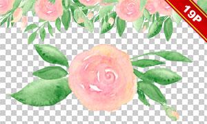 夏日花朵绿叶水彩创意免抠素材集V02
