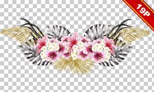 鹦鹉与鲜花树叶等元素免抠图片素材