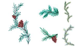 水彩效果松树枝等主题矢量素材V01