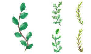 水彩效果松树枝等主题矢量素材V04