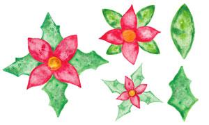 绿叶红花植物水彩效果展现矢量素材
