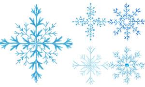 手绘风冬日季节雪花元素矢量素材V03