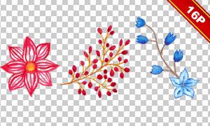 手绘花朵绿叶主题元素免抠图片素材