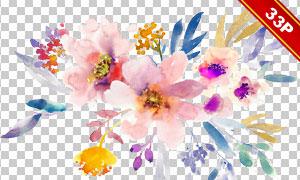水彩效果花朵树叶创意免抠图片素材