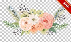 绿叶花朵水彩手绘展现免抠图片素材
