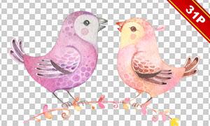 水彩风格羽毛小鸟主题免抠图片素材