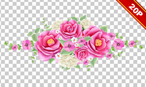 缤纷鲜艳水彩逼真花卉植物免抠图片