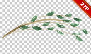 唯美水彩风格鲜花绿叶免抠图片素材