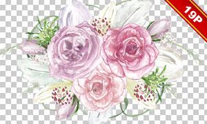 水彩效果实用花朵元素免抠图片素材