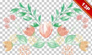精美水彩风格花朵绿叶免抠图片素材