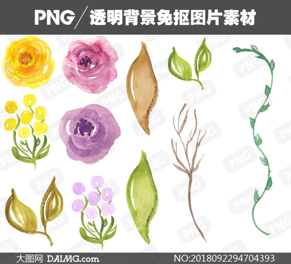 元素png元素免扣素材水彩素材手绘素材绿叶叶子树叶花朵鲜花花卉藤蔓