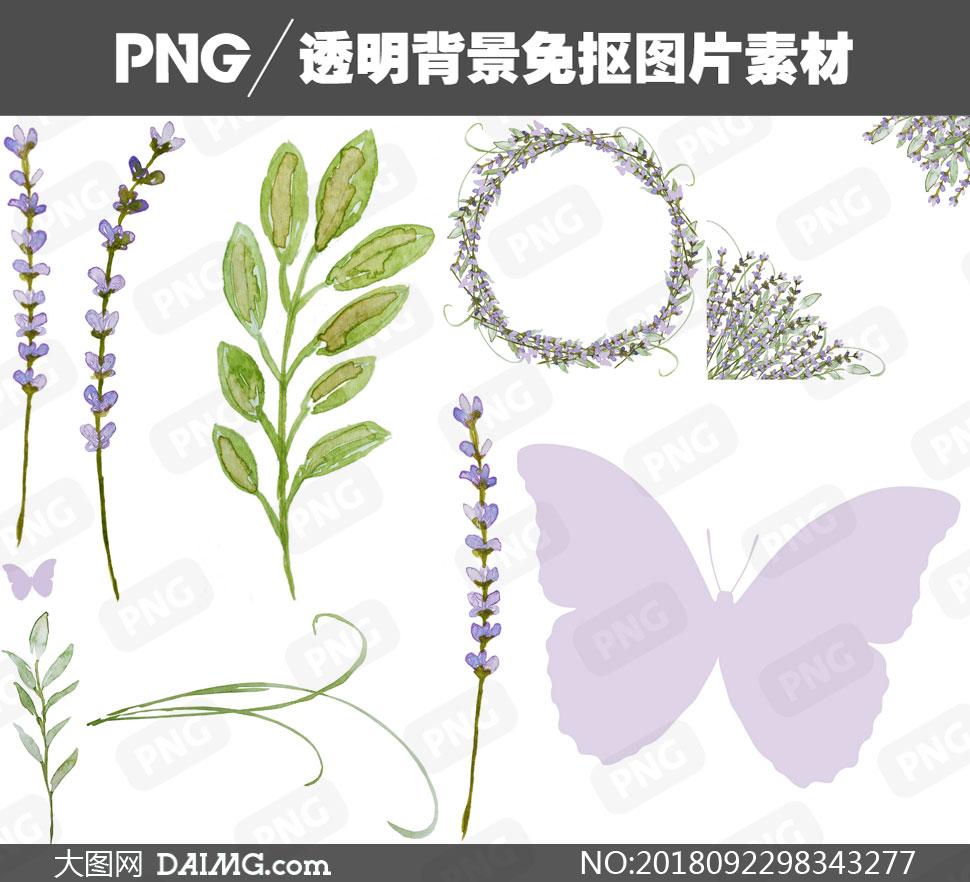 扣素材水彩素材手绘素材绿叶叶子树叶花朵鲜花花卉边框薰衣草蝴蝶花草