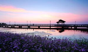 阳澄湖半岛旅游度假区摄影图片