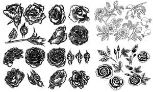 黑白手绘风花朵等创意设计矢量素材