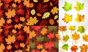 四方连续秋天树叶背景矢量素材V03